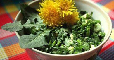 Салат из одуванчиков и весенней зелени диетический